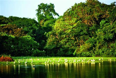Viajes a Brasil: Lençois Maranhenses y crucero por el Amazonas