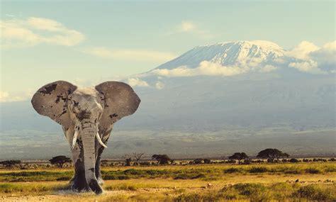 Viajes Alventus | Descubriendo Kenia