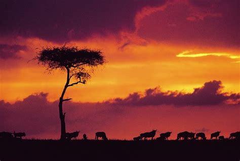Viajes por el mundo, turismo internacional: Kenia ...
