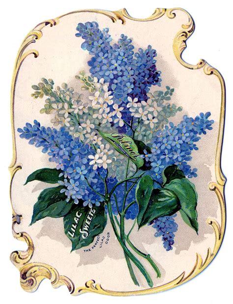 Victorian Clip Art   Stunning Lilacs Perfume Ad   The ...