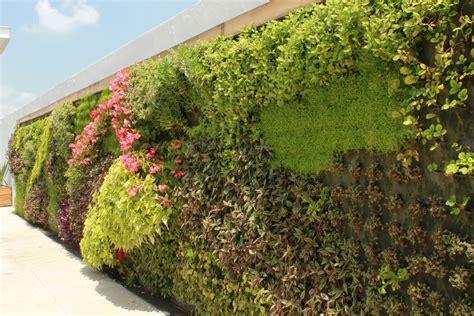 VIDA VERDE: Muro Verde Andares