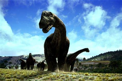 Videos de Animales Dinosaurios | Animales en Video
