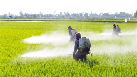 Vietnam Bans Paraquat and 2,4 D over Human and ...