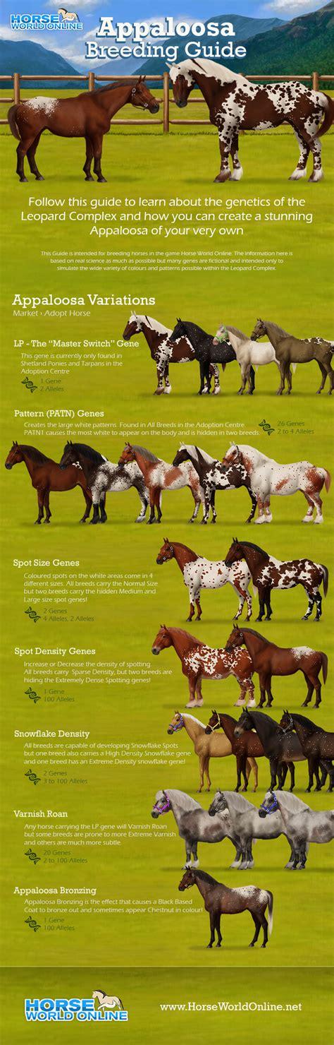 View topic   Horse World Online | Horse Breeding Genetics ...