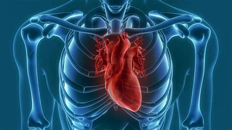 VIII Curso SERAM de Imagen del Corazón   espacio seram