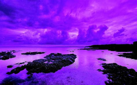 violetas: COLORES PARA PINTAR