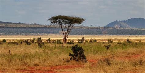 Visado para viajar a Kenia | El Rincón del Trotamundos