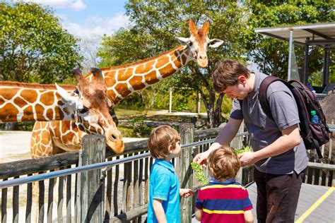 Visit the Wildest Place in Oregon: The Oregon Zoo | Vine ...