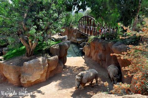Visita al Bioparc de Valencia   Criadero de peces ...