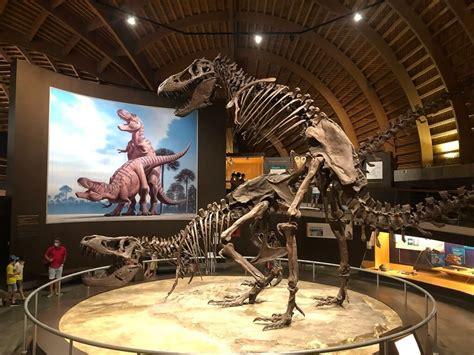 Visita al Museo del Jurásico de Asturias  Con ruta por las ...