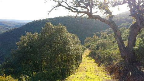 Visita al Parque Nacional de Cabañeros