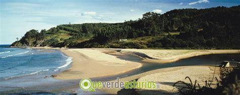 Visita al yacimiento de la playa de La Griega y a los ...