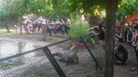 Visitar el parque Safari Madrid por un día | El blog de ...