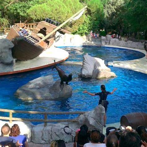 Visitar Zoo con Niños Pequeños | Zoo Aquarium de Madriduarium