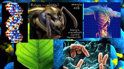 Vistazo a la biología | Introducción a la biología ...
