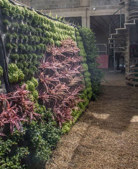 Viveiro Muro Verde   Jardins Verticais Residenciais e ...