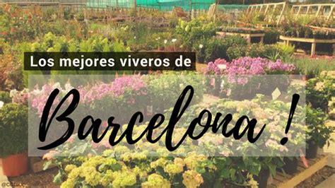 Viveros en Barcelona | Plantas y Paisajismo en Barcelona