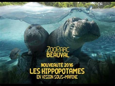[Vlog] Ma visite au zoo de Beauval 2016 [2/2]   YouTube