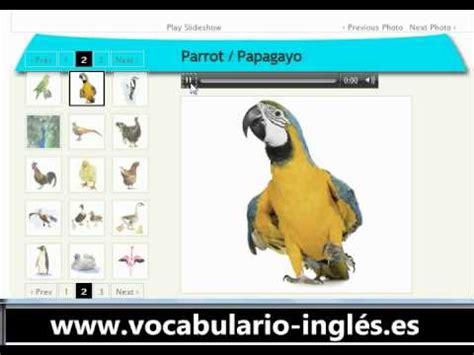 Vocabulario de Ingles los Pajaros  http://www.facile ...