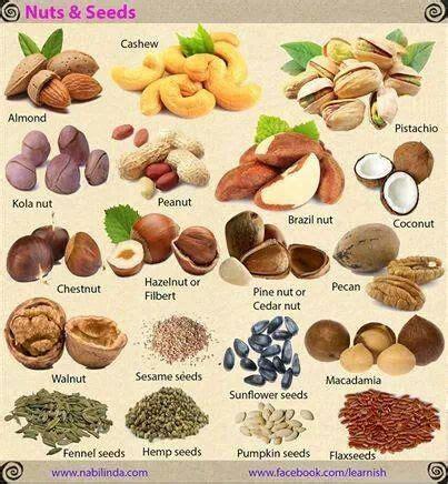 Vocabulario frutos secos y semillas Pinterest   https ...