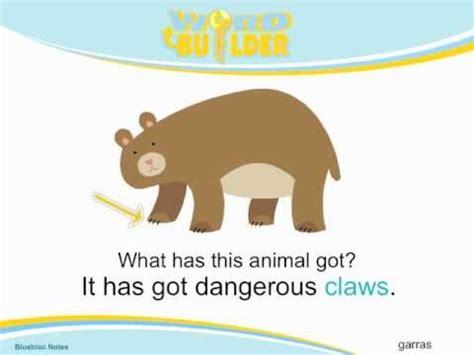 Vocabulario Inglés: Descripción de Animales  Animal ...