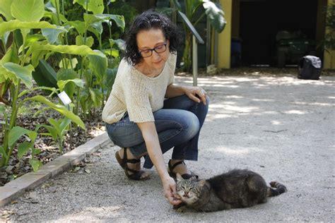 Voluntariado   Consultora Felina