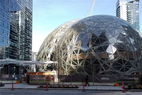Watch the first plant arrive at Amazon's biospheres ...