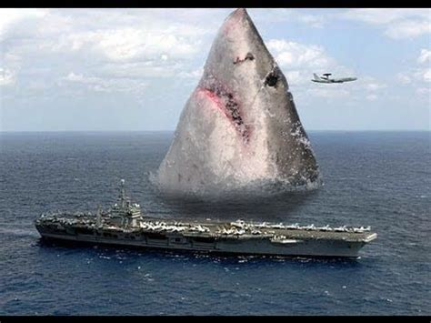 WAY wrong proportions, megalodon was only about 50 60 feet ...