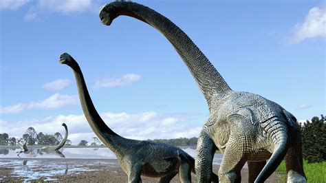 We Just Discovered A Massive New Australian Dinosaur ...