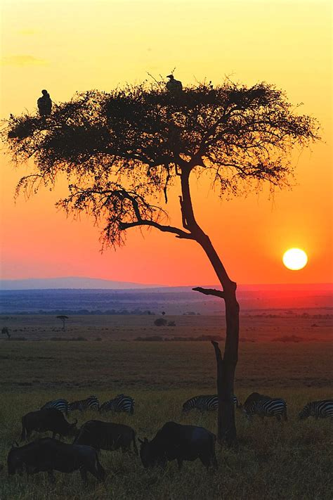 Welcome To The Land Of The Immortals : Africa | Paisajes ...