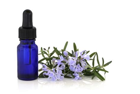 What Can I Use Flower Essences For? | NaturalTherapyPages ...