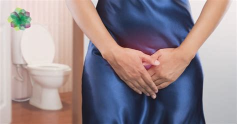 What Is a Prolapsed Bladder, the Symptoms and How Do I ...