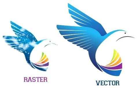 What is vector tracing? How do I turn a raster image into ...