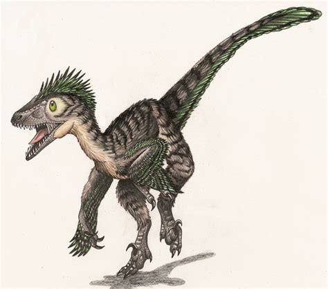 What s the difference between a Velociraptor and a ...