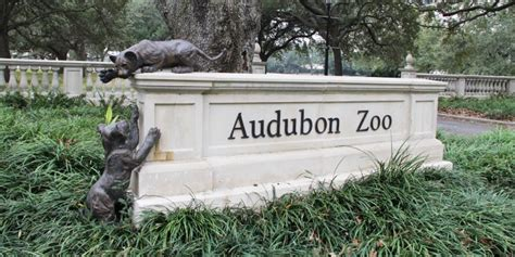What to See at the Audubon Zoo in New Orleans   Free Tours ...