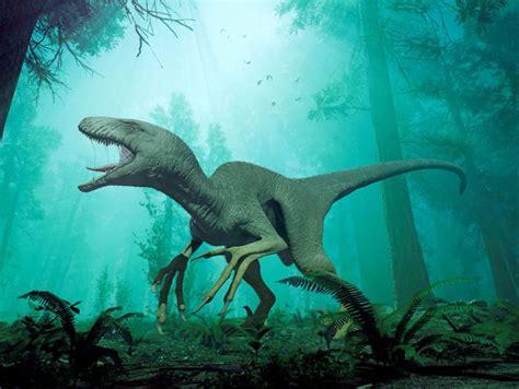 What Were Velociraptors?   Facty