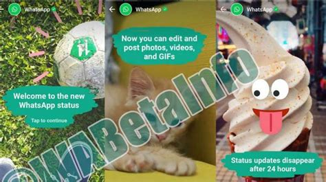 WhatsApp actualiza su  estado  con fotos o videos que ...