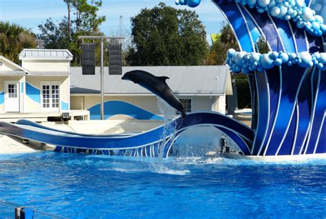 Where to buy cheap Seaworld Orlando tickets