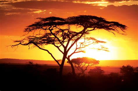 Why rural Kenya stole my heart | Intrepid Travel Blog