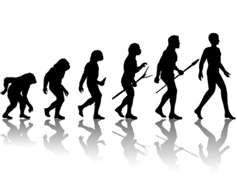 Why Some Evangelicals Changed Their Minds About Evolution ...