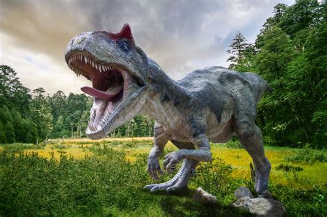 Why the biggest dinosaurs had the flashiest head gear ...