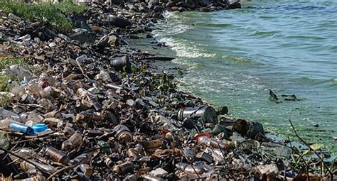 Wikipedia:Featured picture candidates/Water pollution ...