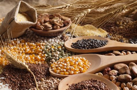 World grain production to hit three year low, IGC says ...