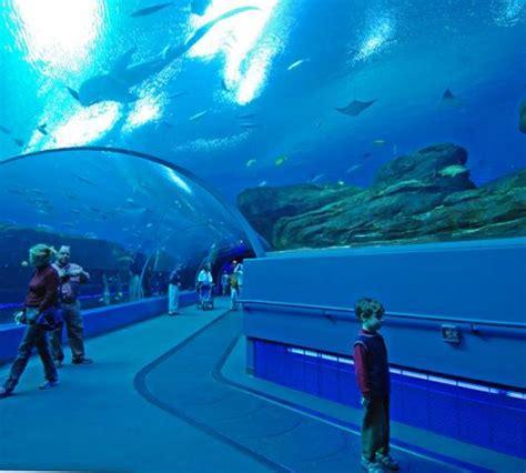 World's Best Aquariums | TravelVivi.com