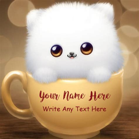 Write Name Cute Cat Beautiful Whatsapp Profile Set Pics ...