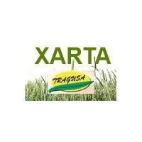 Xarta, 1L  Herbicida Diflufenican  | Diflufenican | Herbicidas