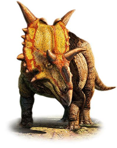 Xenoceratops, New Type of Horned Dinosaur, Is Identified ...