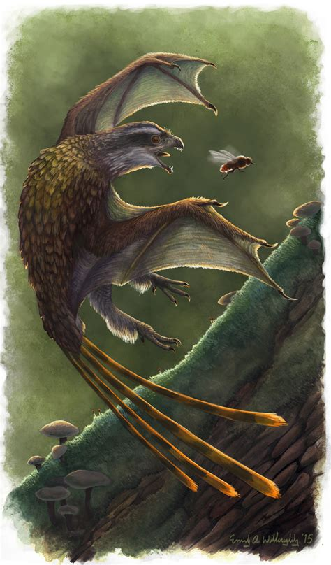 Yi  dinosaur    Wikipedia