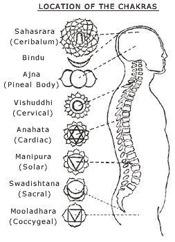Yoga Types   Kundalini Yoga  From The Tantra  Service ...