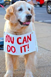You can do it! | Best Race Signs